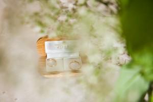 foto-anillos-boda-planta